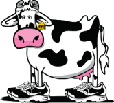Running with the Cows logo on RaceRaves