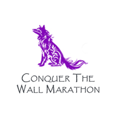Conquer the Wall Marathon & Half on the Great Wall of China logo on RaceRaves